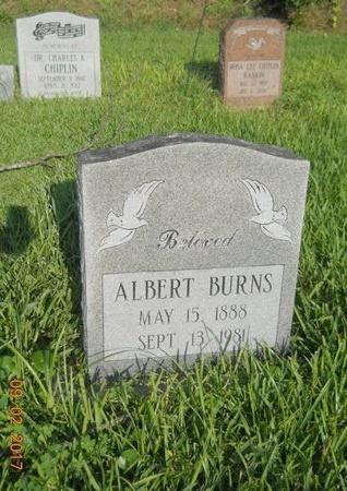 BURNS, ALBERT - Warren County, Mississippi   ALBERT BURNS - Mississippi Gravestone Photos