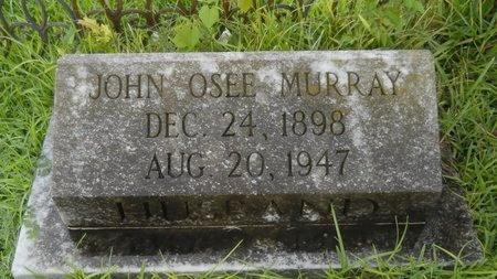 MURRAY, JOHN OSEE - Warren County, Mississippi | JOHN OSEE MURRAY - Mississippi Gravestone Photos