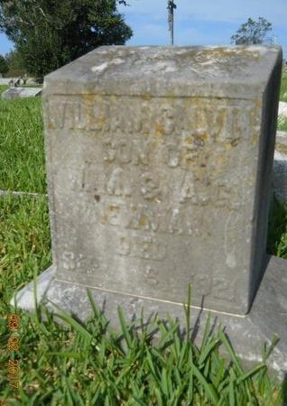 NEWMAN, WILLIAM CALVIN - Warren County, Mississippi | WILLIAM CALVIN NEWMAN - Mississippi Gravestone Photos