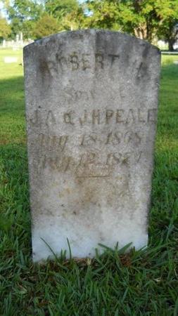 PEALE, ROBERT H - Warren County, Mississippi | ROBERT H PEALE - Mississippi Gravestone Photos