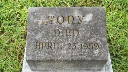 SEAY, TONY - Warren County, Mississippi | TONY SEAY - Mississippi Gravestone Photos
