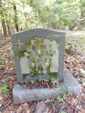 STROUGHTER, NATLEE H - Warren County, Mississippi | NATLEE H STROUGHTER - Mississippi Gravestone Photos