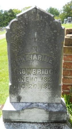 TROWBRIDGE, CATHERINE - Warren County, Mississippi | CATHERINE TROWBRIDGE - Mississippi Gravestone Photos