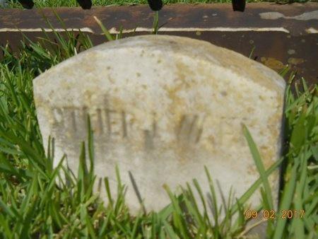 WAHL, SOTHER J - Warren County, Mississippi | SOTHER J WAHL - Mississippi Gravestone Photos