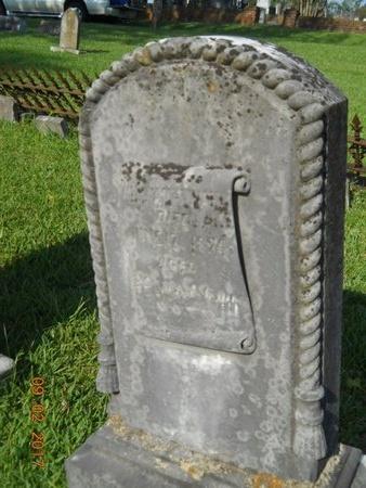 WAHL, WILLIAM J - Warren County, Mississippi | WILLIAM J WAHL - Mississippi Gravestone Photos