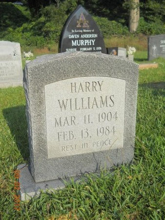 WILLIAMS, HARRY - Warren County, Mississippi | HARRY WILLIAMS - Mississippi Gravestone Photos