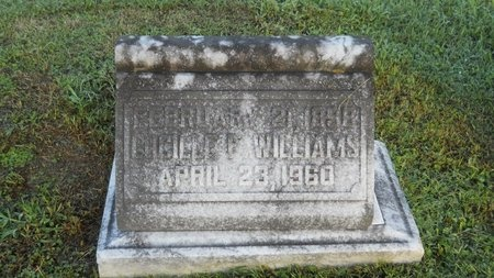 WILLIAMS, LUCILLE F - Warren County, Mississippi | LUCILLE F WILLIAMS - Mississippi Gravestone Photos