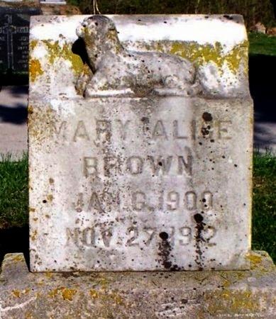 BROWN, MARY ALICE - Adair County, Missouri | MARY ALICE BROWN - Missouri Gravestone Photos