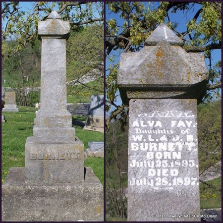 BURNETT, ALVA FAY - Adair County, Missouri | ALVA FAY BURNETT - Missouri Gravestone Photos
