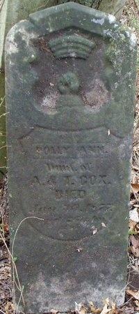 COX, POLLY ANN - Adair County, Missouri   POLLY ANN COX - Missouri Gravestone Photos