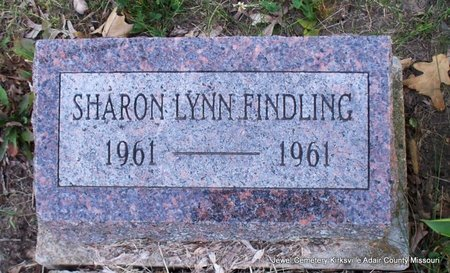 FINDLING, SHARON LYNN - Adair County, Missouri | SHARON LYNN FINDLING - Missouri Gravestone Photos