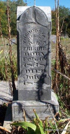 SOUTHARD FRISBIE, THEODOSIA ESTELLA - Adair County, Missouri | THEODOSIA ESTELLA SOUTHARD FRISBIE - Missouri Gravestone Photos