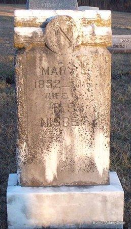 NESBIT, MARY LOUISA - Adair County, Missouri | MARY LOUISA NESBIT - Missouri Gravestone Photos