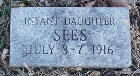 SEES, INFANT DAUGHTER - Adair County, Missouri | INFANT DAUGHTER SEES - Missouri Gravestone Photos