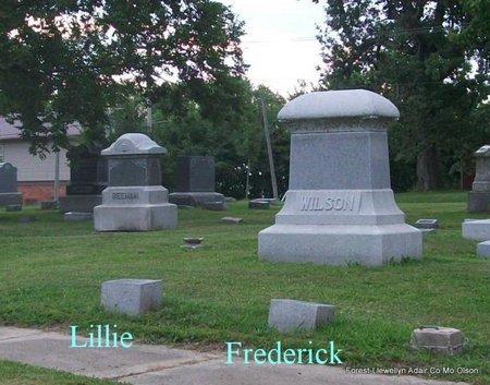 WILSON, FAMILY PLOT (OVERVIEW) - Adair County, Missouri | FAMILY PLOT (OVERVIEW) WILSON - Missouri Gravestone Photos