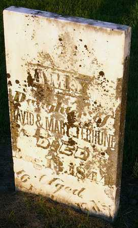 TERHUNE, AMY - Andrew County, Missouri | AMY TERHUNE - Missouri Gravestone Photos