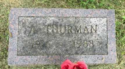 WELDON, ANDREW THURMAN - Andrew County, Missouri | ANDREW THURMAN WELDON - Missouri Gravestone Photos