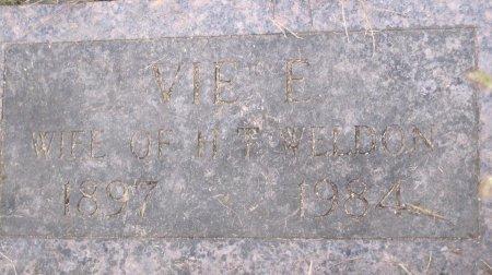 WELDON, VIE EMILY - Andrew County, Missouri | VIE EMILY WELDON - Missouri Gravestone Photos