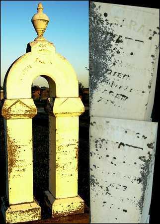 WYATT, FREDERICK - Andrew County, Missouri | FREDERICK WYATT - Missouri Gravestone Photos