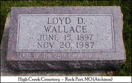 WALLACE, LOYD D. - Atchison County, Missouri | LOYD D. WALLACE - Missouri Gravestone Photos