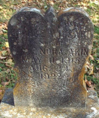 AKIN, GEORGE WILLARD - Barry County, Missouri | GEORGE WILLARD AKIN - Missouri Gravestone Photos