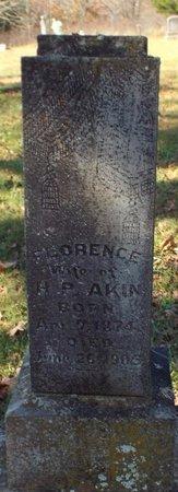 AKIN, NANCY FLORENCE - Barry County, Missouri   NANCY FLORENCE AKIN - Missouri Gravestone Photos