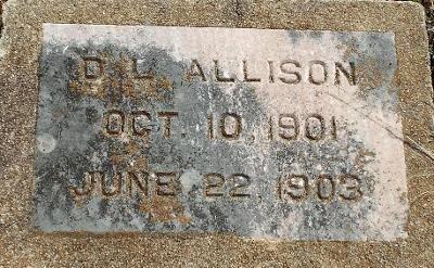 ALLISON, D. L. - Barry County, Missouri   D. L. ALLISON - Missouri Gravestone Photos