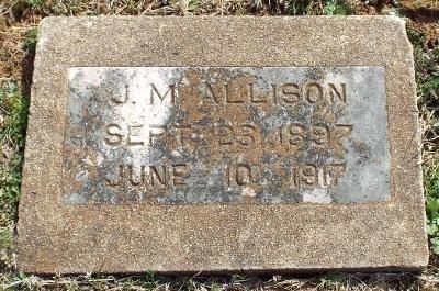 ALLISON, J. MYRTLE - Barry County, Missouri | J. MYRTLE ALLISON - Missouri Gravestone Photos