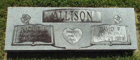 ALLISON, DAVID RAYMOND - Barry County, Missouri | DAVID RAYMOND ALLISON - Missouri Gravestone Photos