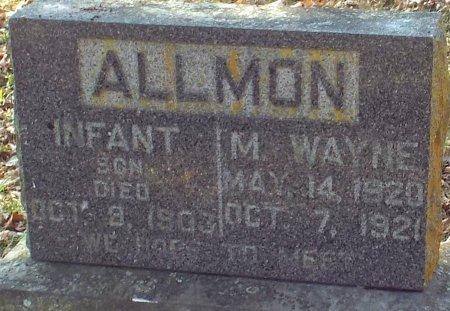 ALLMON, M. WAYNE - Barry County, Missouri | M. WAYNE ALLMON - Missouri Gravestone Photos
