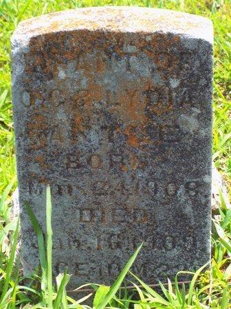 ANTLE, RUTH - Barry County, Missouri | RUTH ANTLE - Missouri Gravestone Photos