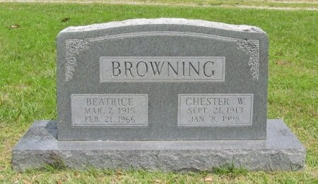 BROWNING, CHESTER WARD - Barry County, Missouri | CHESTER WARD BROWNING - Missouri Gravestone Photos
