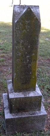 CARNEY, LAURA A - Barry County, Missouri | LAURA A CARNEY - Missouri Gravestone Photos
