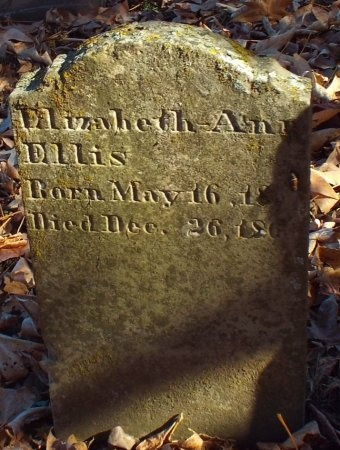 ELLIS, ELIZABETH ANN - Barry County, Missouri | ELIZABETH ANN ELLIS - Missouri Gravestone Photos