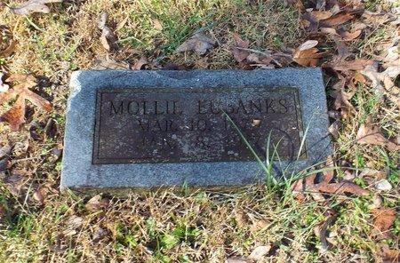 EUBANKS, MOLLIE E - Barry County, Missouri | MOLLIE E EUBANKS - Missouri Gravestone Photos