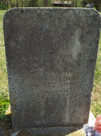 GARRISON, WINSON OR WINTON - Barry County, Missouri | WINSON OR WINTON GARRISON - Missouri Gravestone Photos