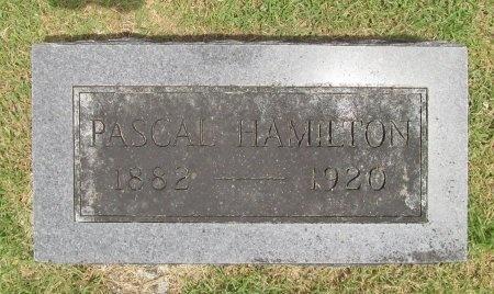 HAMILTON, PASCAL A - Barry County, Missouri | PASCAL A HAMILTON - Missouri Gravestone Photos