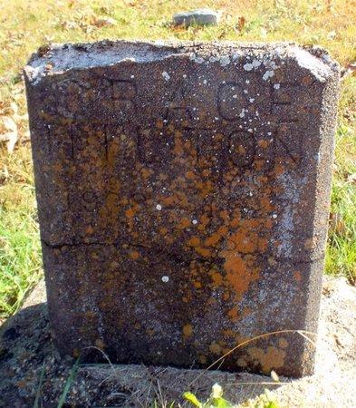 HILTON, GRACE - Barry County, Missouri   GRACE HILTON - Missouri Gravestone Photos