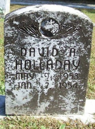 HOLLADAY, DAVID A. - Barry County, Missouri | DAVID A. HOLLADAY - Missouri Gravestone Photos