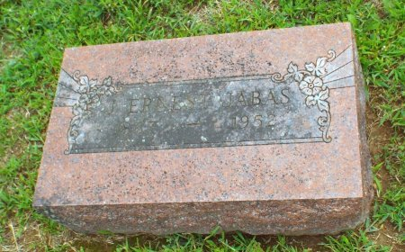 JABAS, JULUS ERNEST - Barry County, Missouri | JULUS ERNEST JABAS - Missouri Gravestone Photos