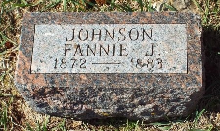 JOHNSON, FANNIE J - Barry County, Missouri | FANNIE J JOHNSON - Missouri Gravestone Photos