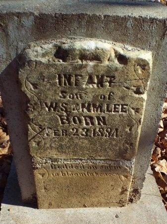 LEE, INFANT SON - Barry County, Missouri | INFANT SON LEE - Missouri Gravestone Photos