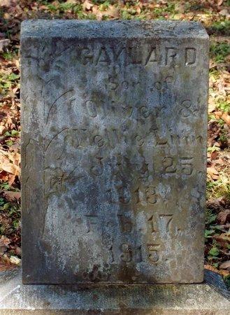 LINN, WILLIAM GAYLORD - Barry County, Missouri   WILLIAM GAYLORD LINN - Missouri Gravestone Photos