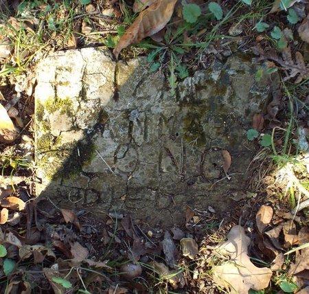 LONG, ELIZABETH ANNA - Barry County, Missouri | ELIZABETH ANNA LONG - Missouri Gravestone Photos