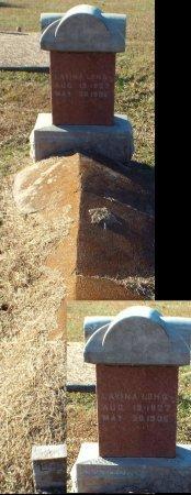 LONG, LAVINIA  - Barry County, Missouri | LAVINIA  LONG - Missouri Gravestone Photos