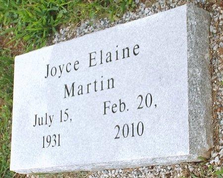 MARTIN, JOYCE ELAINE  - Barry County, Missouri   JOYCE ELAINE  MARTIN - Missouri Gravestone Photos