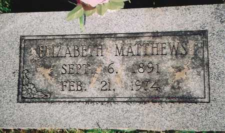 "MATTHEWS, ELIZABETH ""LIZZIE"" - Barry County, Missouri | ELIZABETH ""LIZZIE"" MATTHEWS - Missouri Gravestone Photos"