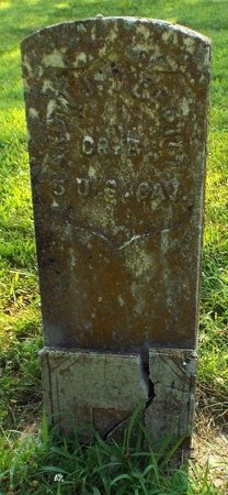 MERRITT, ANDREW JACKSON VETERAN 2 WARS - Barry County, Missouri | ANDREW JACKSON VETERAN 2 WARS MERRITT - Missouri Gravestone Photos