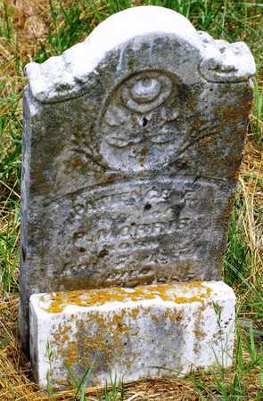 WELLS MORRIS, PATIENCE E - Barry County, Missouri   PATIENCE E WELLS MORRIS - Missouri Gravestone Photos