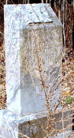PERKINS, JAMES WILLIAM - Barry County, Missouri | JAMES WILLIAM PERKINS - Missouri Gravestone Photos